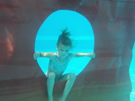 Onderwater foto Emma de Brouwer diploma C.JPG